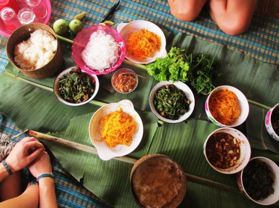 Lunch in the rice field